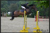 Tournée des As à Fay les Etangs le 5 Juin 2016 : As Poney Elite (1m30)