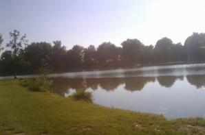 etang de vallourec a leval et mon rod pod au canal a mon poste