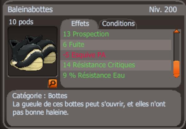 crafte botte baleinabottes