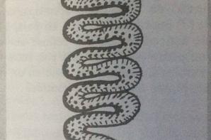 Sekhmeth Kali Isiss Niñhursag le véritable culte Thug Life par Ptah Shyva Rudra