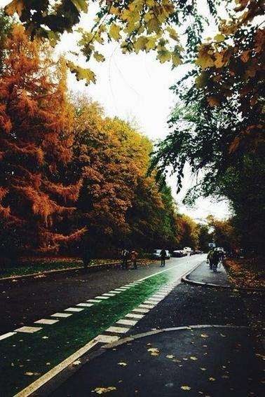 ♣ Autumn I ♣