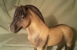 Petit poney sympa.