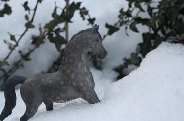 Oh de la neige...