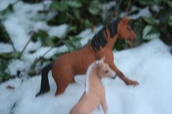 Oh de la neige... 2
