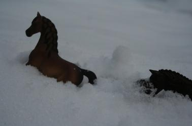 Oh de la neige... 3