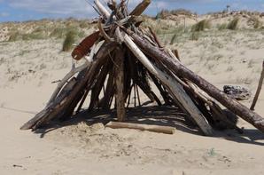 plage de la cote sauvage en Charente maritime