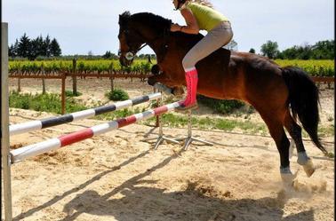 """"""" 0n ne rennonce jamais au chevaux."""