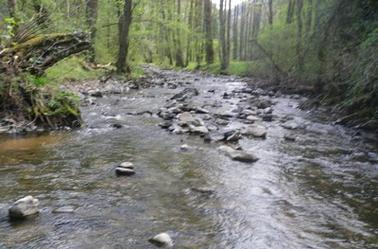 Vendredi 11 Avril 2014 Que ma rivière est belle…