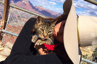 I'm so sorry Nina ! RIP Lynx... ❤