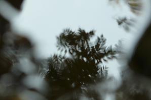 Reflets.