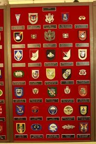 Insigne Beret USA