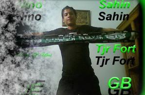 Fan De Les Verts