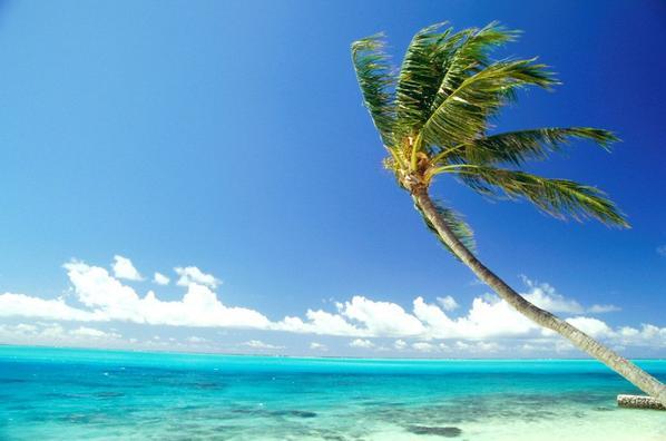 Qui veut- partir en vacances  à Hawaï ?