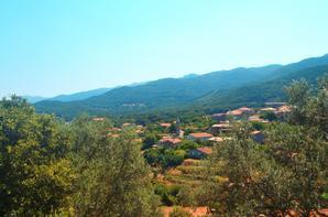 Corse 2013