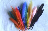 Set de fleurs en bois et plumes d'indiens