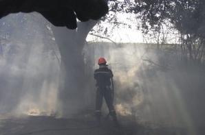 Sapeurs Pompiers du Var (4)
