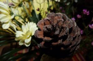 « Quand on décore un sapin de Noël, on a toujours l'impression qu'il nous faudrait une guirlande de plus ! » de Loi de Murphy