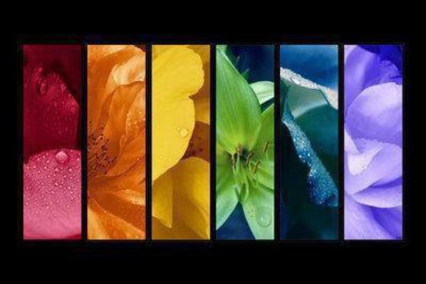 Trace ta route parmi les couleurs de la vie et non par les couleurs que tu vois...