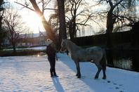 """"""" Le bonheur est comme la neige : il est doux, il est pur et... il fond. """""""