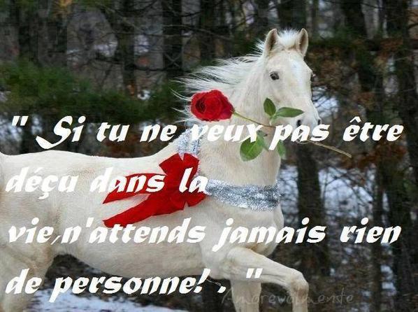 (l) BONJOUR MES AMIS JE VOUS SOUHAITE UNE EXCELLENTE JOURNÉE DE CE MARDI......GROS BISOUS D'AMITIÉ SINCÈRE FATY....(l)