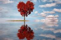 (l)(l) Bonne fête aux amoureux.(l)(l) Et que les amis (es) qui sont dans la solitude, trouvent dans l'avenir une âme s½ur.  C'est mon souhait le plus cher.Et n'oublie pas de fête saint valentin entre amis (es) (l)(l)