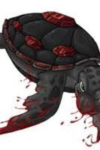 mais tortue