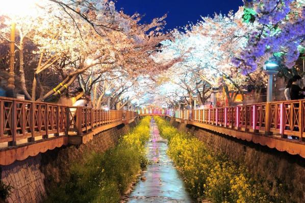 Photos de la Corée du sud