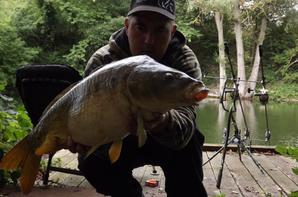 quelques fishs de 2012