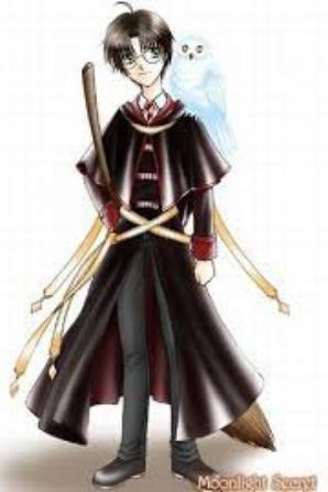 images de quidditch