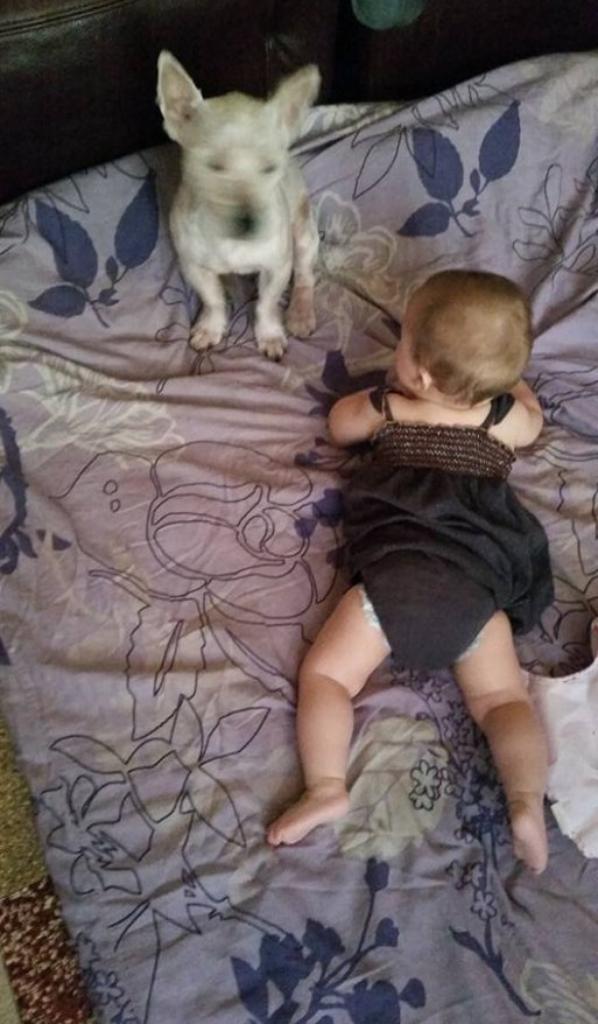 ma fille 7 mois et 10 jours ;)
