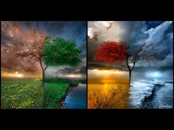 le coeur à ses saisons