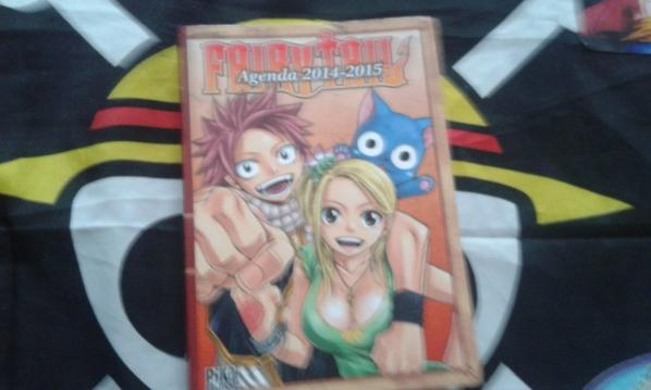 Mon agenda fairy tail 2014 2015