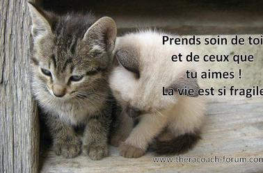 """""""Les amis sont les anges qui nous soulèvent lorsque nos ailes n'arrivent plus à se rappeler comment voler""""Anonyme"""