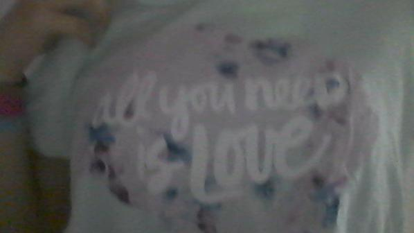 Tee shirt All You need is Love
