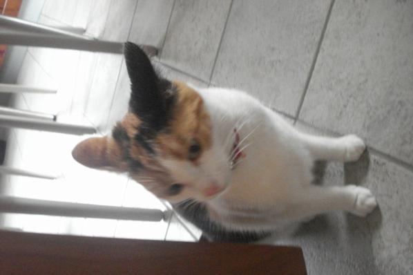 Suzy <3