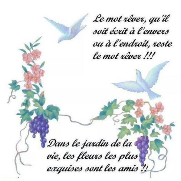 etre libre!!!!!!!