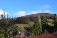 Les magnifiques paysages d'Alsace, Sainte-Marie les mines