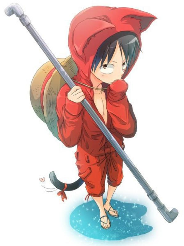 Neko of One piece