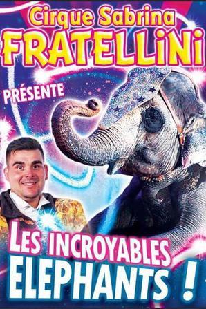 les nouvelles affiches du cirque SABRINA FRATELLINI !!!!