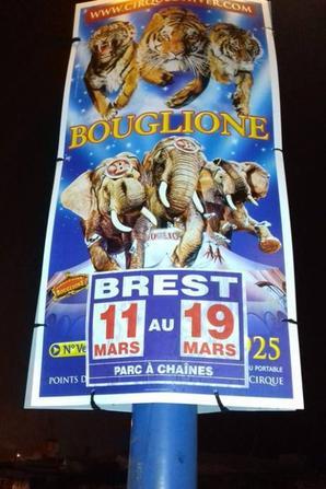 le cirque D HIVER BOUGLIONE s affiche à brest !!!!