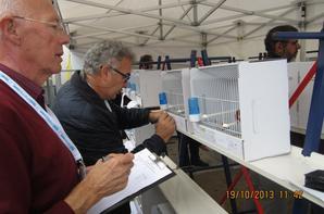 concours international Bordeaux 2013