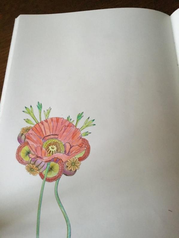 AUx crayons