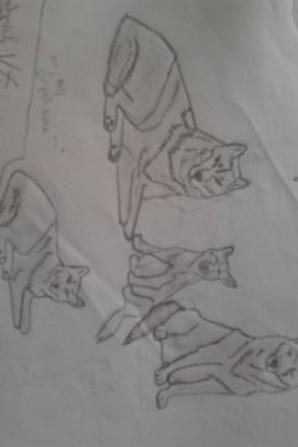 dessins fin