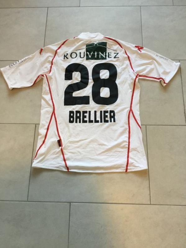 Saison 2008-2009 Julien BRELLIER