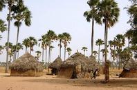 Excursions brousse voir la vrai vie sénégalaise