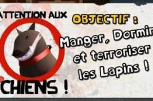 Fans de Lapins Crétins