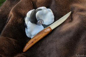 4ème couteau la 'plume' mon premier pied monté