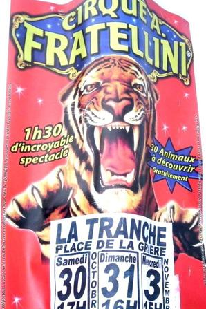 Affiches carton CIRQUE FRATELLINI MORDON