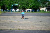petite promenade au terrain de basket