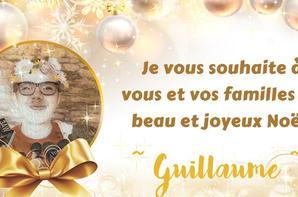 Joyeuses fêtes de fin d'année a tous !!!!!